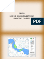 isla corazon y fragatas en el ecuador