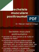 Sechelele musculare posttraumatice