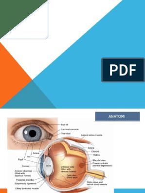 A polioxidonium- prosztatitis gyertyái)