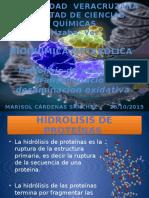 bioquimica metabolica.pptx