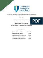 Report Simulation PD
