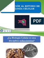 Introducción BioCel
