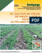 frijolriego-altiplanopotosino