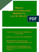 B_Nueva institucionalidad .pdf