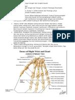 Anatomi Tulang Pergelangan Tangan Dan Tungkai Bawah