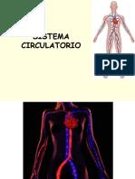 2. Power Point Sistema Circulatorio.