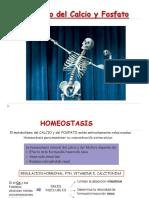 Metabolismo Del Calcio y El Fosfato (1)