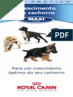 Guia Pratico Maxi