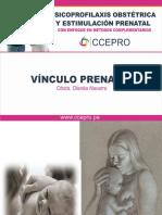 Vinculo Prenatal
