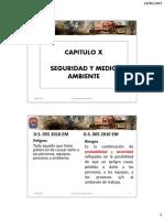 Capitulo X.pdf