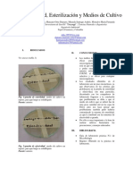 Informe 1 de Microbiologia 2016