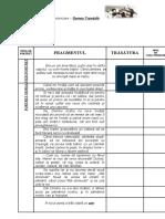 0_0_fisa_de_caracterizare.doc