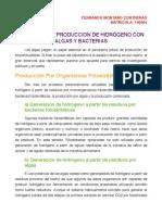 PROCESOS DE PRODUCCION DE HIDRÓGENO CON ALGAS Y BACTERIAS