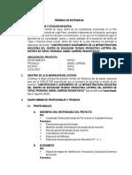 TDR PIP CETPRO PASCO.pdf