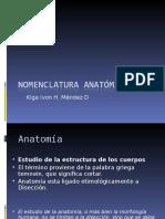 1.Nomenclatura Anatómica