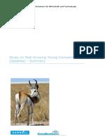 gazelle.pdf