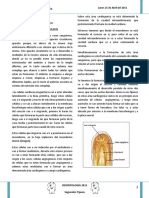 1.- Angiología General.pdf