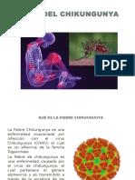 Virus Chincunguya 16 Sept
