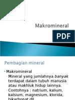 Makromineral. KK 3 Ppt
