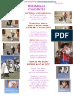 ENMEN DALLA. VIANDANTES.pdf