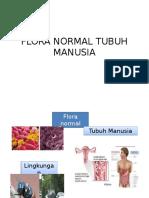 Flora Normal Tubuh Manusia