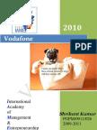 COMPANY PROFILE@ vodafone description and report