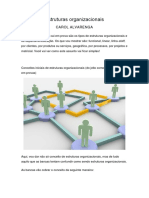 Estruturas Organizacionais- Esquema Mental