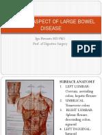 Surgical Aspect of Large Bowel. Pptx