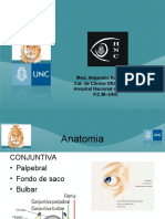 conjuntiva-130410093907-phpapp02.ppt