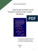 2005_Mariana Oliveira_Origem e evolução das algas eucarióticas e de seus cloroplastos.pdf