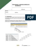 P1 AUXILIARES (Sistema Binario y Unidades de Medida en Informatica)
