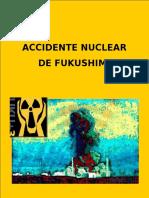 Accidente Núclear en Fukushima, Japón.