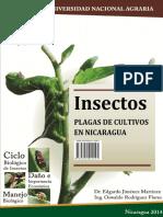 Plagas de Cultivos en Nicaragua