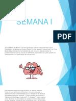 SEMANA-I revista.pdf