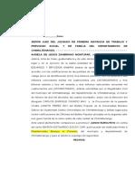 JUICIO EJECUTIVO CIVIL.doc