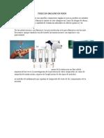 toxicosorganicosfijos-140130102527-phpapp01