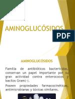 Expo Aminoglusidos Farma PARA EL ESTUDIO ESTOMATOLOGICO EN DIVERSOS ESTATUS DE TRABAJO