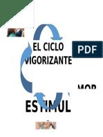 DCICLO VIGORIZA