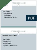 3. Estudio de Mercado (1)