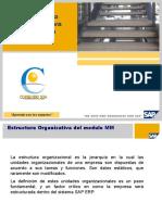 Basic User SAP ERP - Estructura Organizativa Logistica