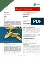 Mycobacterium tuberculosis.pdf