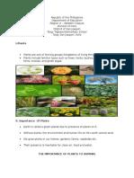 Plants (handouts)