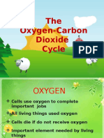 The Oxygen-Carbon Dioxide Cycle