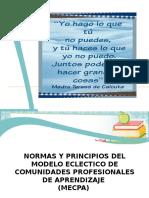 Normas y Principios de MECPA