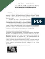 1er avance seminario Biotecnologia (1).docx