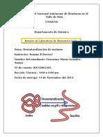 BIO2 - copia (1).docx