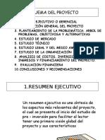 RESUMEN EJECUTIVO DE PROYECTO.ppt