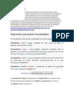 Plastidios