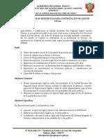 02 Terminos de Referencia-Asesor Legal