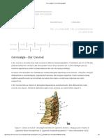 Cervicalgia e Cervicobraquialgia